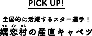 PICK UP! 全国的に活躍するスター選手!嬬恋村の産直キャベツ