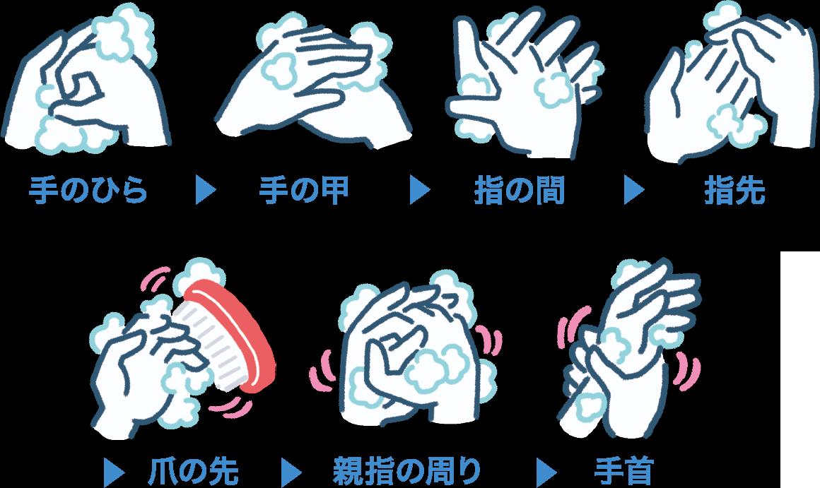 手を洗う順番