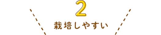 02-栽培しやすい
